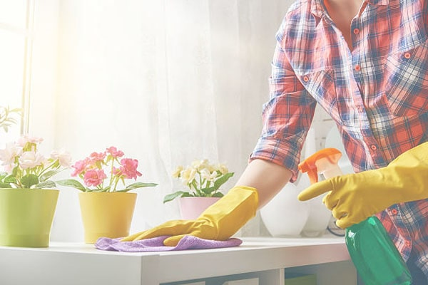 home cleaning assistance